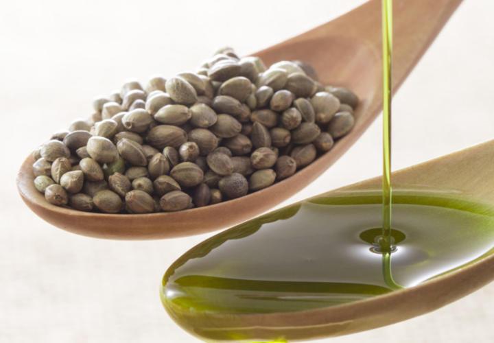 Annabis Hanf Samen Öl Bio